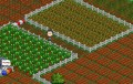farmville-neighbors010