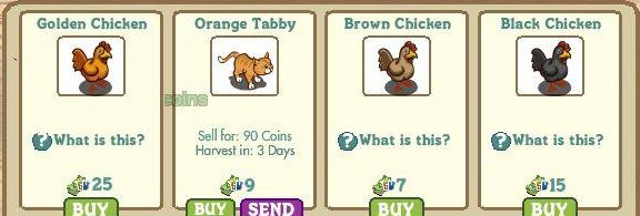 farmville-orange-tabby-chichens