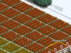 fertilized-plowed-land