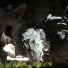 the last guardian screenshot