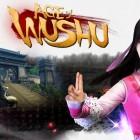 251706-wushu